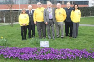 Rotary Club Bulb Planting with Town Mayor
